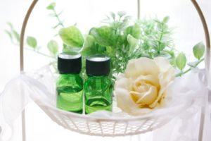 植物療法との出会い
