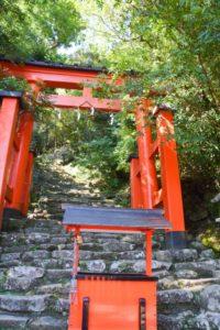 日本のハーブセラピスト歴史
